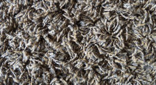 wool carpet maintenance