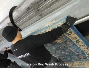 Immersion Rug Wash Process