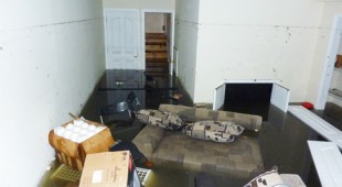 water damage and mold